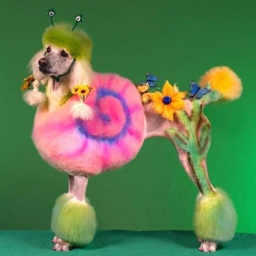 3-.Perro florero con mariposas (mirad la carita de pena)