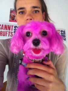 4-. Perro rosa