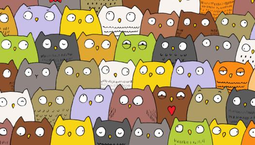 ¿Encuentras al gato entre los búhos?