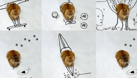 Un gato y sus miles de doodles