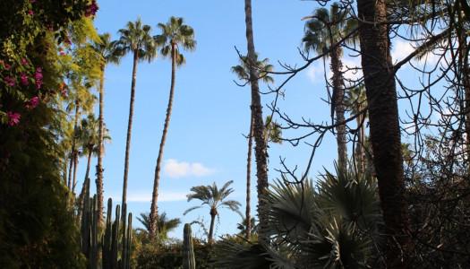 ¡Nos vamos de viaje! – Marrakech I