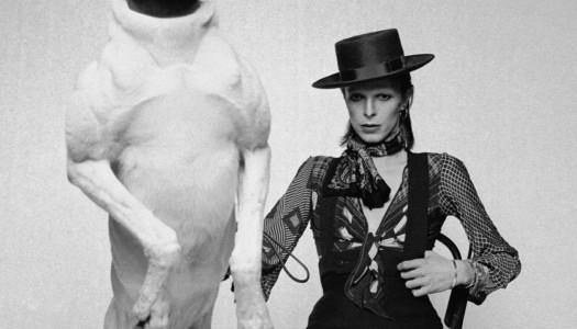 David Bowie nunca morirá para nosotros