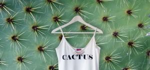 cactus_slide