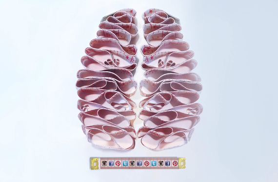 2016-03-22-1458654835-4526747-Brain-thumb