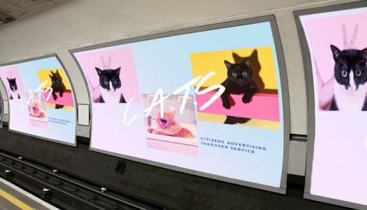 ¡Gatos en los anuncios del metro de Londres!