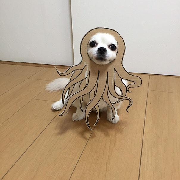disfraz perro halloween  (1)