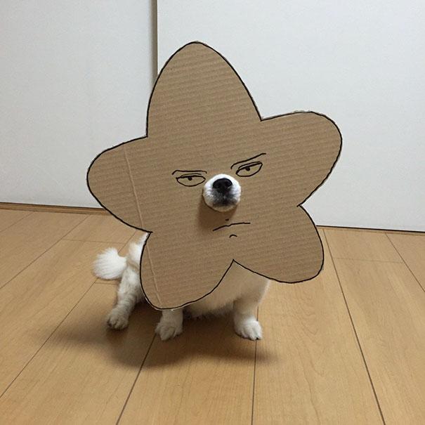 disfraz perro halloween  (4)