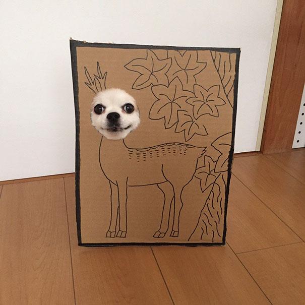 disfraz perro halloween  (5)