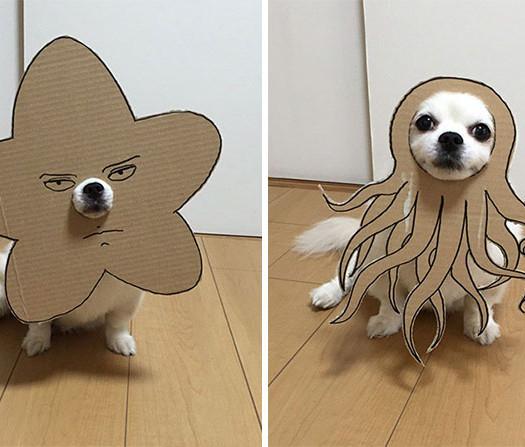 disfraz perro halloween  (8)