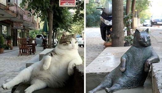 Cuando un gato se convierte en monumento de una ciudad