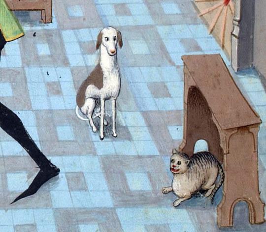 gatos feos medievales (11)