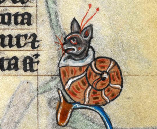 gatos feos medievales (13)