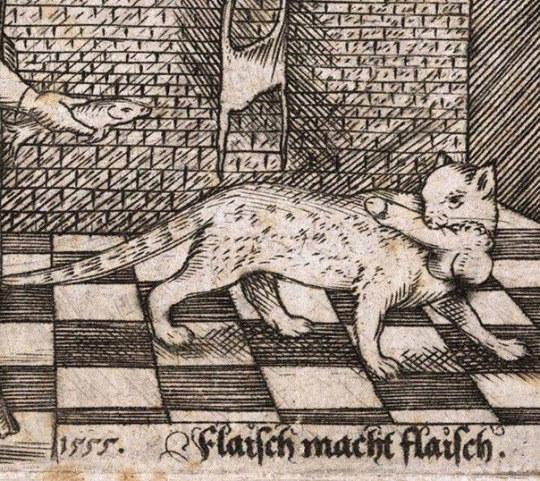 gatos feos medievales (19)