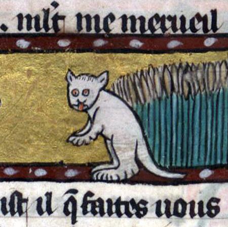 gatos feos medievales (2)
