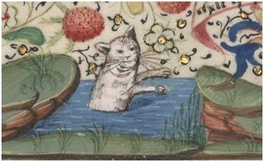 gatos feos medievales (4)