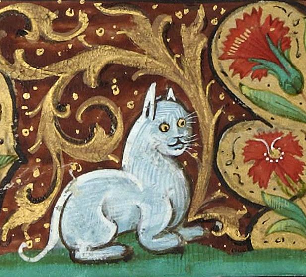 gatos feos medievales (7)