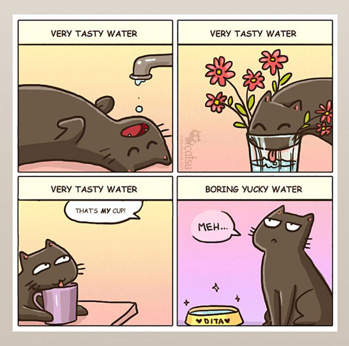 gatos dibujos comics  (10)
