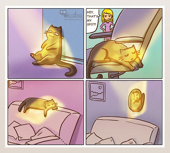 gatos dibujos comics  (1)