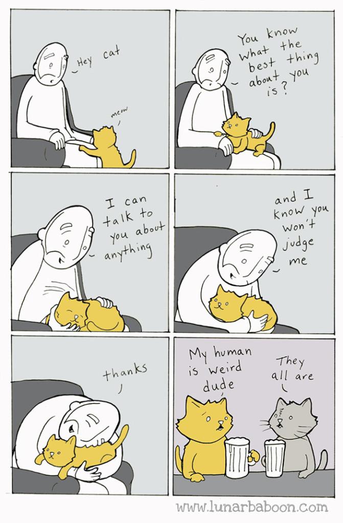 gatos dibujos comics  (13)