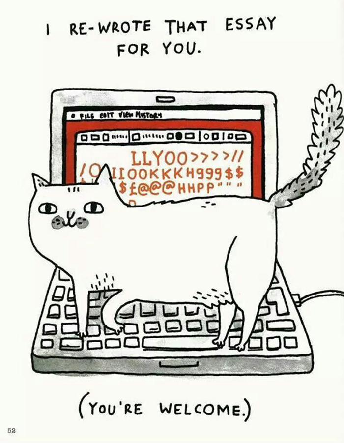 gatos dibujos comics  (16)