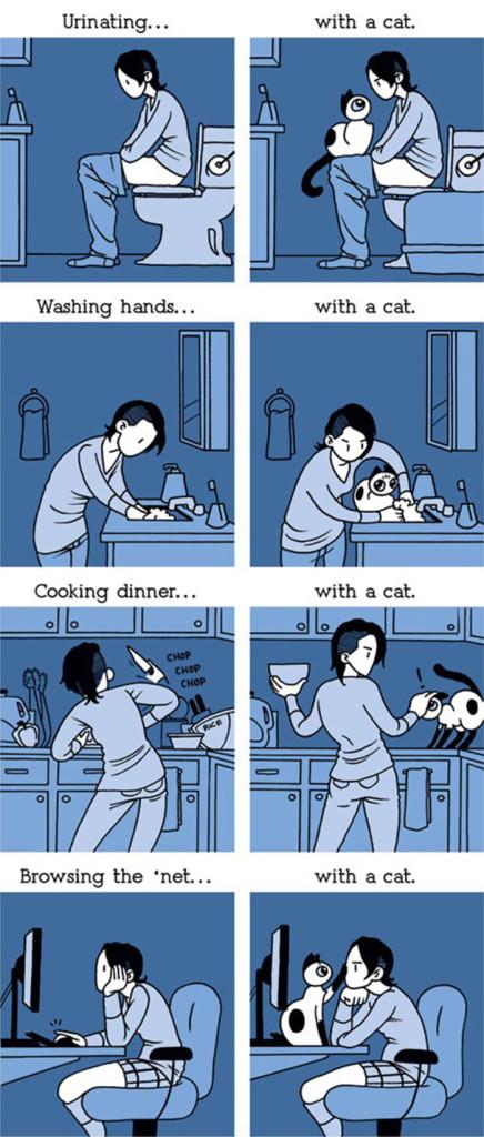 gatos dibujos comics  (2)