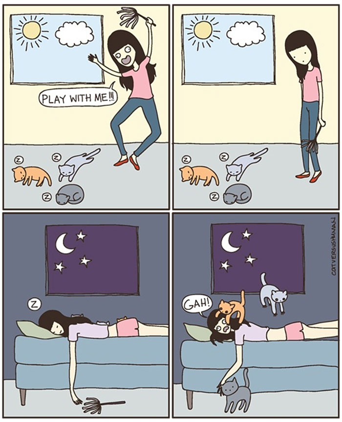 gatos dibujos comics  (7)