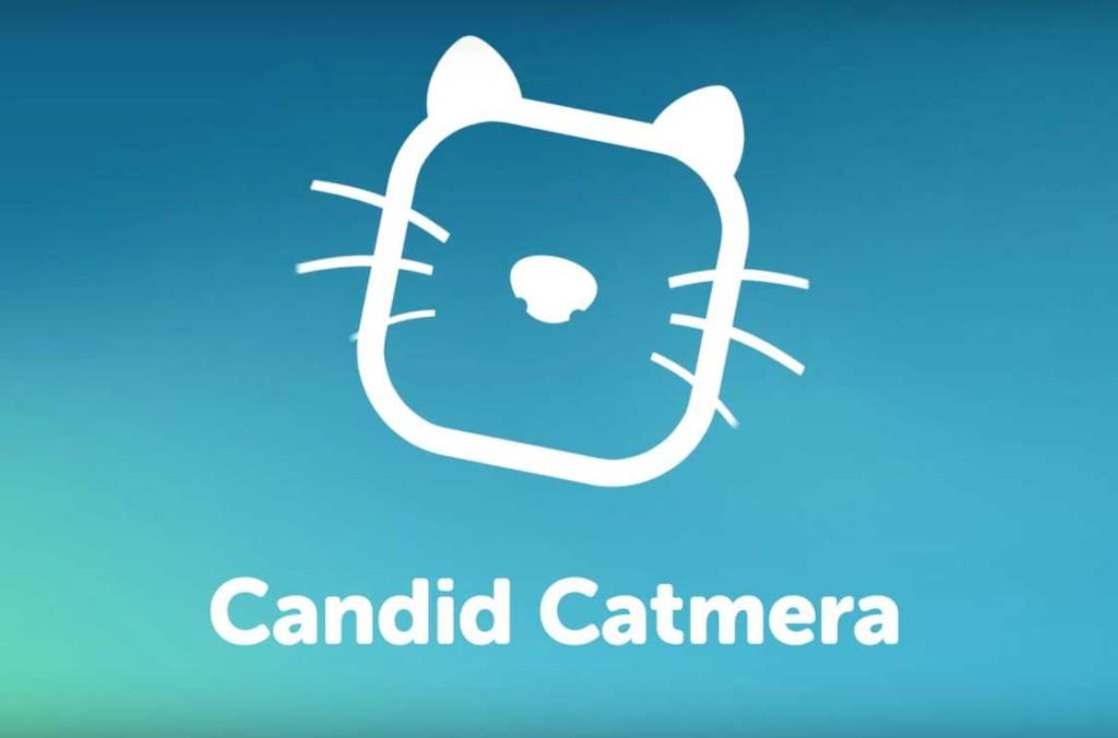catmera (3)